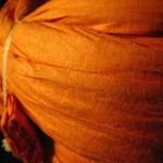 Coil of Orange Paper by Carole Maso
