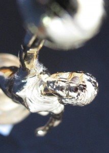 trophy-closeup