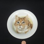 Kitty Saucer by James Parker