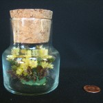 Jar of Flowers by Sarah Manguso