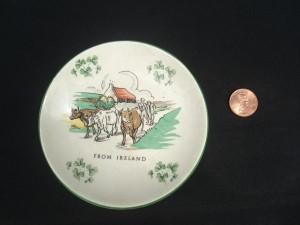 7a-ireland-dish